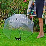 It's Raining Cats Regenschirm im Test